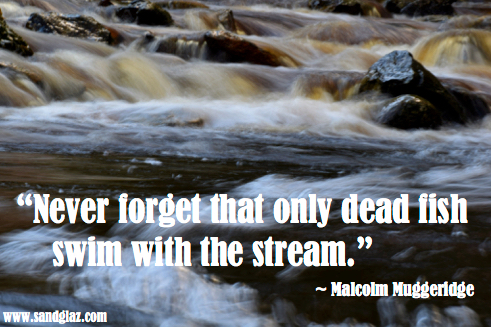 """Never forget that only dead fish swim with the stream."" ~ Malcolm Muggeridge"