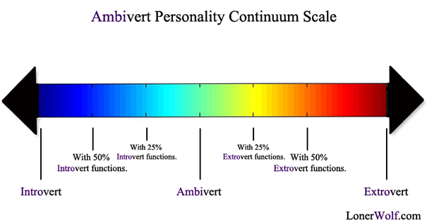 introverted extroverted continuum